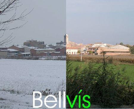Bell-vis