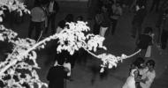 """FOTOS/ Galeria de fotografies de la pista """"La Terraza"""""""
